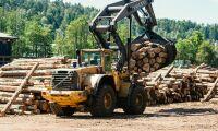 Moelven utvecklar landets smartaste sågverk