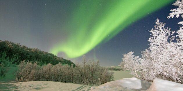 Rymdfysikern svarar: Vad är norrsken – egentligen?