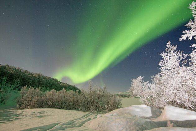 De gåtfulla slöjorna av ljus över vinterhimlen har lockat fram fantasifulla förklaringar genom århundradena. Till exempel har man trott att de är återsken efter väldiga sillstim. Detta norrsken sågs över Abisko i Lappland.