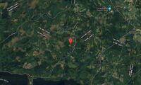 Ny ägare till skogsfastighet i Skåne i januari