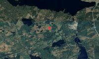 Skog i Krokoms kommun såld