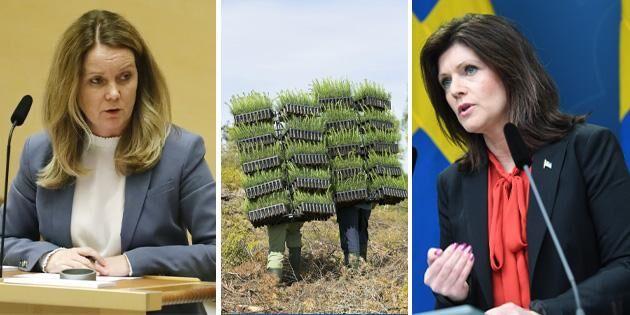 Olika besked om skogsarbetare från olika ministrar