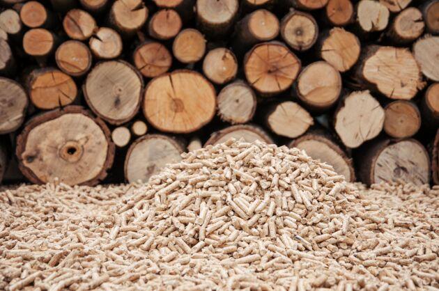 Leverantörer av pellets är oroliga att denna vinter kommer bli ännu värre än 2017-2018 då bristen förra året kom efter nyår medan man i år märker av den redan nu.