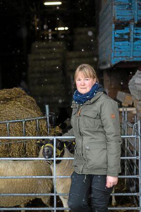Saga Planting Svensson och hennes make driver Österby gård. De har 27 tackor plus lamm samt nötkreatur. De har även en gårdsbutik och bedriver entreprenadverksamhet och hästfoderförsäljning.