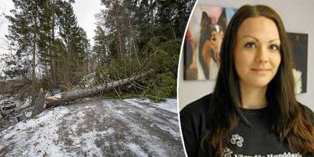 Josefine fixade sovplatser till strömlösa efter stormen Alfrida