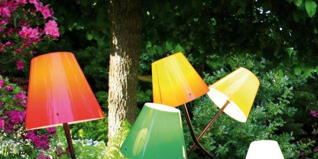 Lys upp trädgården med glada lampor