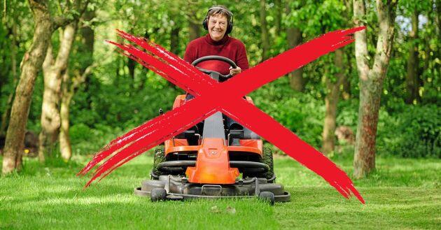 Klipp inte gräset.