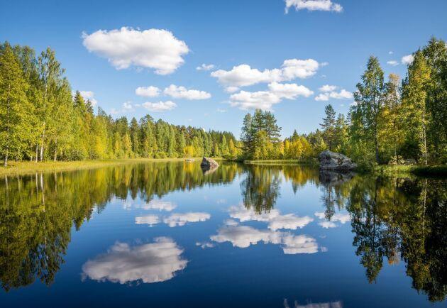 Den här underbara miljön är inte bara vacker, den är hälsosam också.