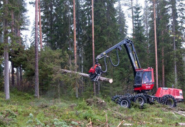 Kostnaderna för att föryngringsavverka sjönk något 2017, visar nya siffror från Skogsstyrelsen.