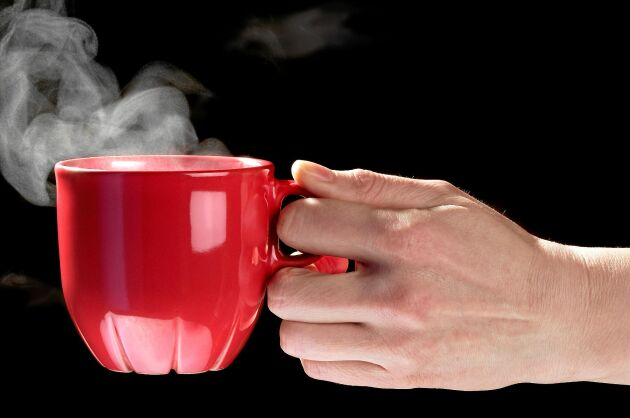 En kopp te kan göra susen mot insektsbettet!