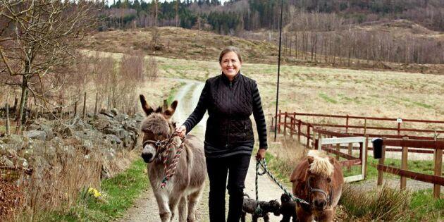 """Gill hjälper människor med psykisk ohälsa på sin gård: """"Grön rehab är bra för själslig balans"""""""