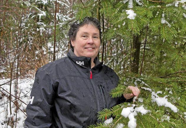 Cecilia Malmqvist, lektor på Linnéuniversitetet.