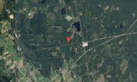 Ny ägare till skogsfastighet i Gävleborg i oktober