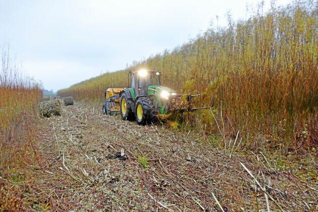 Stora rundbalar av salix rullar ut ur Biobalern. Det är den enda maskinen i Sverige och den kör runt till odlingar i främstSkåne, Östra Götaland och runt Mälardalen.