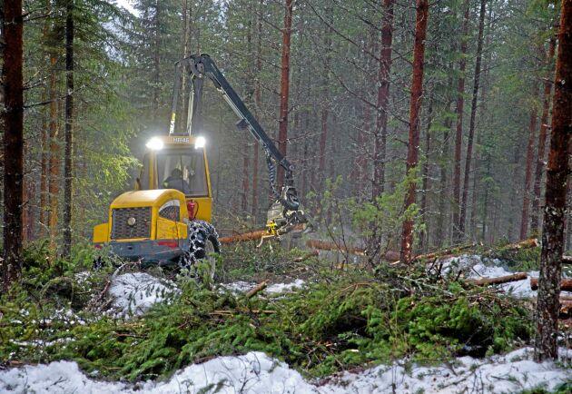 Samtidigt som avverkningsviljan är rekordhög i Norra Norrland så sjunker den i övriga landet, framför allt i Södra Norrland.