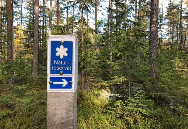 Södra hade anmält en avverkning som följde skötselplanen i naturreservatet, men eftersom det saknades tillstånd från länsstyrelsen blir det nu böter på 50 000 kronor. (Reservatet på bilden har ingen koppling till händelsen.)