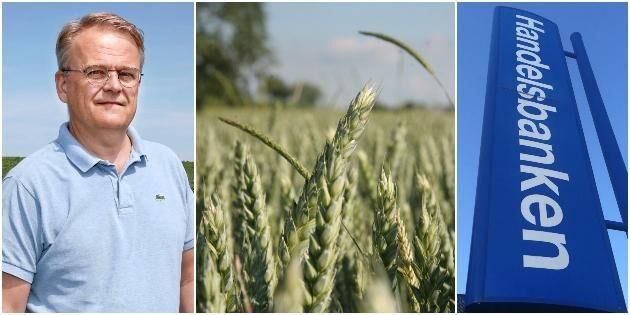 Även om terminssäkring av spannmål fortfarande inte är riktigt vedertaget i lantbrukarkåren har de flesta som är aktiva använt just Handelsbanken för sina affärer.
