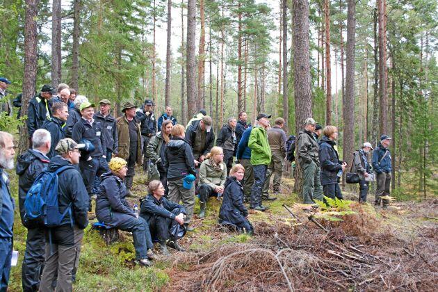 Totalt hade 60 personer anmält sig till exkursionen för att titta på Skogssällskapets provytor som avverkats med tjäderhänsyn.