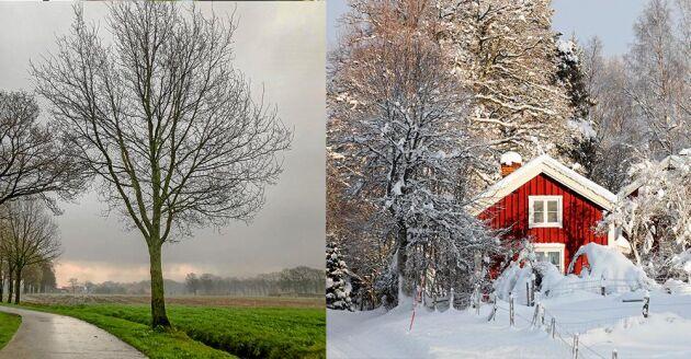 Det är barmark och milt i stora delar av landet just nu. Endast i västra delarna av Norrland kan man få njuta av snö.