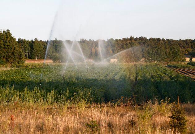 Grundvattennivåerna i landet är lägre än normalt i hela södra Sverige. Nu föreslås en rad insatser som ska öka vattenskyddet och på sikt förbättra vattenresurserna. Arkivbild