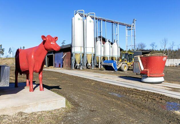 Bröderna Larsson på Stallberg Lantbruk AB investerade i en ny mjölkgård för 4 år sedan.