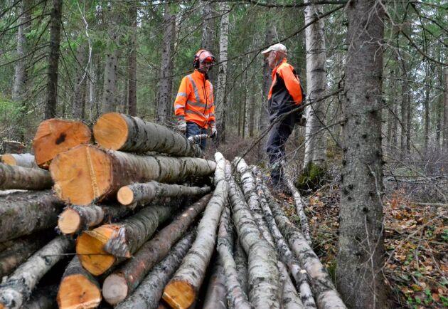 Skogsbolaget SCA gjorde ett lägre resultat än väntat för det fjärde kvartalet 2018.