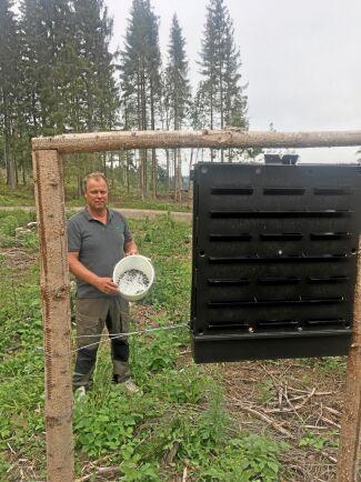 Urban Andersson är skogsskyddsombud i Höglandets skogsbruksområde och har tre övervakningsfällor på sin mark. I slutet av juli hade han över 5 000 granbarkborrar i sina fällor. Det var årets största fångst.