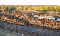 Stora Enso vill ersätta olja i träskivor