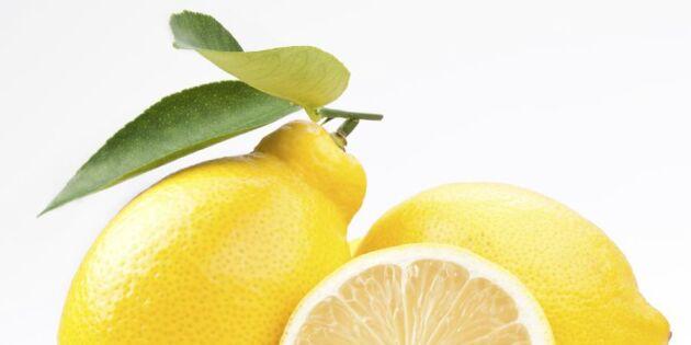 Skinande rent kök med egengjord citrusvinäger