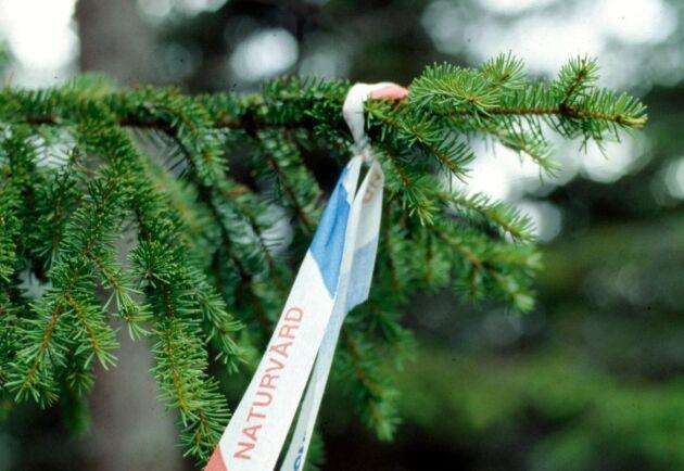 Sveaskogs 37 ekoparker är inte eftersatta utan har hela tiden prioriterats, menar debattören Peter Bergman.