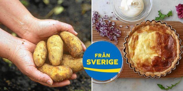 Upptäck Västerbottens mat: Fantastiska råvaror och underbara smaker!