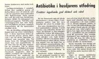 Ifrågasatte antibiotika i foder redan 1953