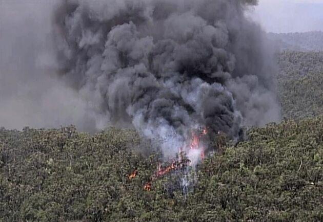 Över en miljon hektar har brunnit sedan terrängbränderna startade i Australien i oktober. Här syns en av brandhärdarna i Gospers Mountain, New South Wales.