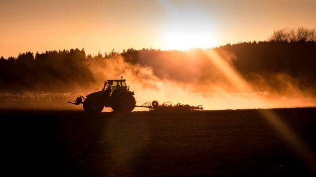 Visa tacksamhet mot svenska lantbrukare, skriver Ebba Bucht Thor (KD).