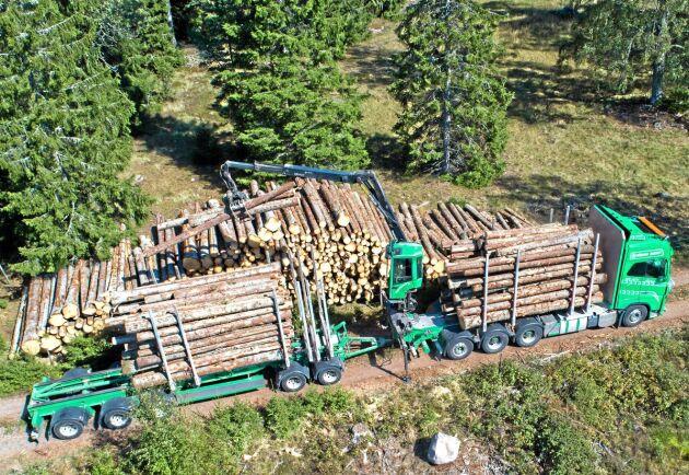 Flera skogsbolag har testat olika typer av 74-tons timmerbilar.