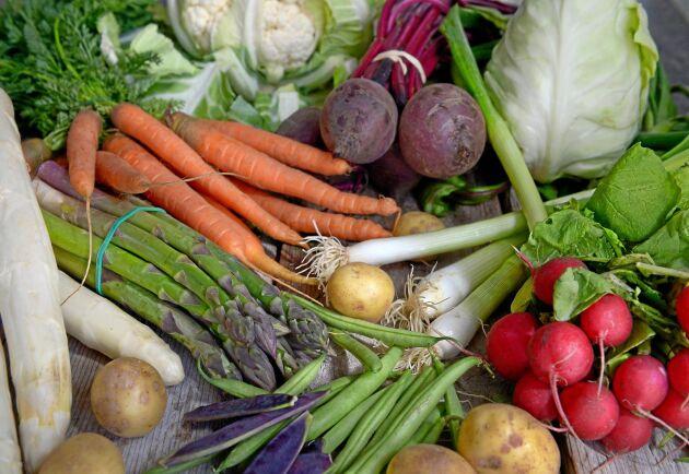 Önskan om att vara klimatsmart har inneburit en kraftig ökning av växtbaserad mat.
