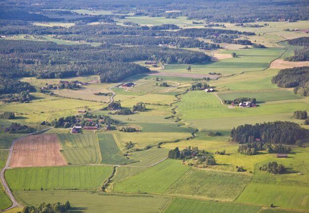 Motsättningarna mellan stad och land upplevs öka allt mer, det visar en rapport från Stockholms Handelskammare.