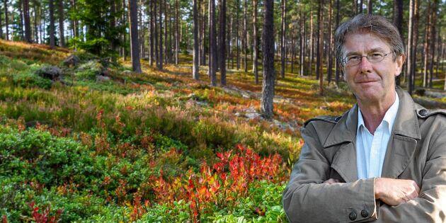 """Fornling om skogsutredningen: """"För många bollar i luften"""""""