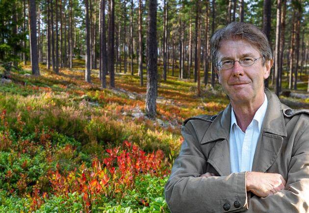 Ledarskribenten Pär Fornling är rädd för fortsatt fumlande i mörker när Skogsutredning 2019 kommer.