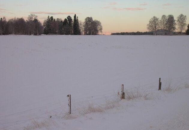 Vinterlandskap utanför Öjebyn.