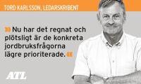 Starka svenska röster behövs i EU-parlamentet