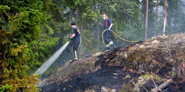 Rättegång om skogsbrand skjuts upp