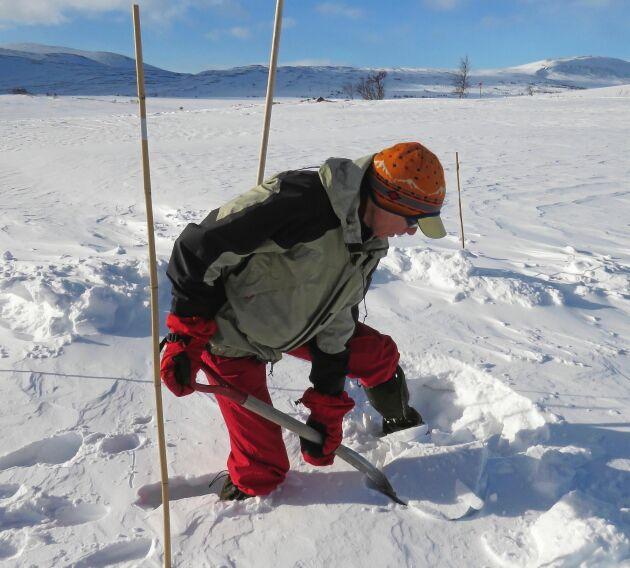 Här vid STF:s Vålåstugan i Jämtland hämtas vattnet vintertid i en liten tjärn intill. Men den upphuggna lilla vaken har täckts av nattens snöfall, så Håkan Steen får gräva.