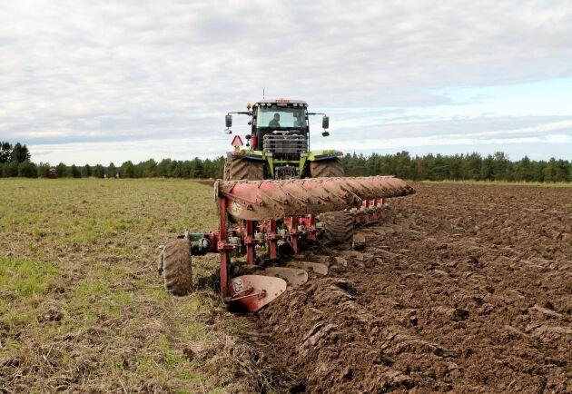 Genomtorr jord ställer till det i höstbruket.