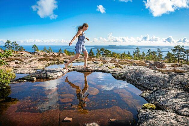 Skuleskogen på Höga Kusten är en av Sveriges Nationalparker.
