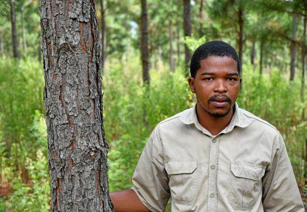 Yhabani Khumalo arbetar för TWK i Swaziland. När den sydafrikanska staten inte ger fler planteringstillstånd satsar flera skogsbolag på att växa i grannländerna.