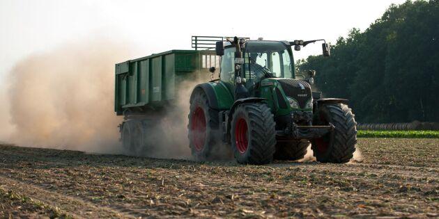Lettland: Torkan en naturkatastrof för jordbruket