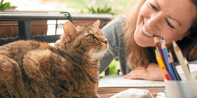 Därför är det bra för hälsan att ha katt