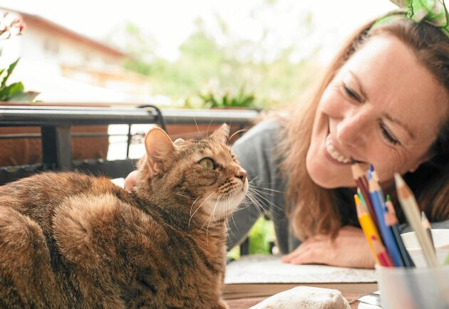 Katter – och hundar – har oväntade effekter på hälsan, visar flera studier.