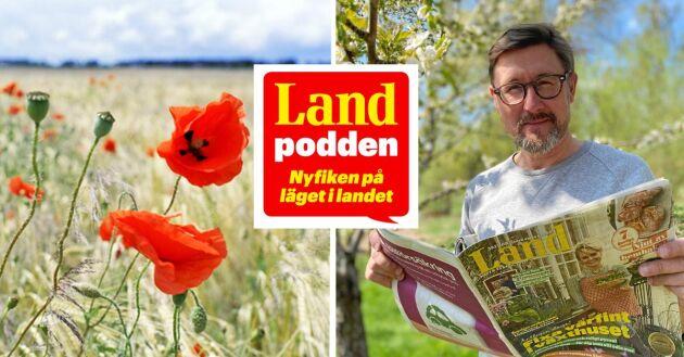 Landpodden - en ny podd från Land-redaktionen.
